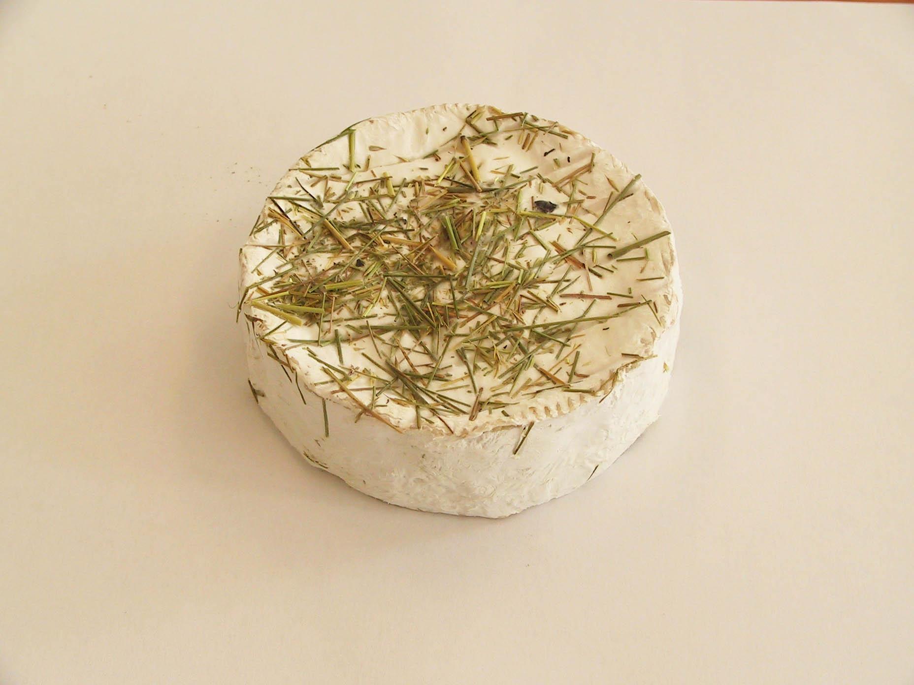 Olivet foin